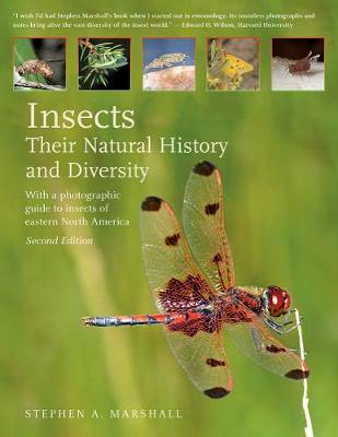 Insects by Stephen A. Marshall
