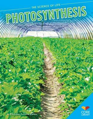 Photosynthesis by Christine Zuchora-Walske