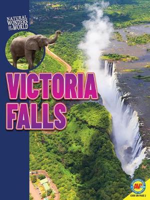 Victoria Falls book