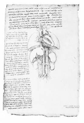Leonardo's Anatomical Drawings by Leonardo da Vinci