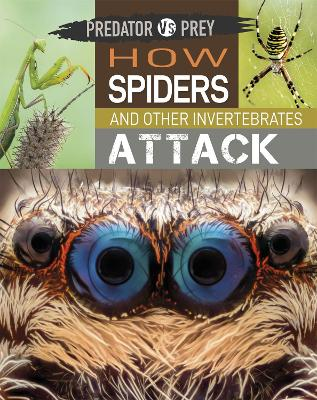 Predator vs Prey: How Spiders and other Invertebrates Attack by Tim Harris