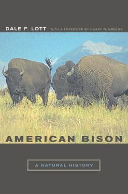 American Bison by Dale F. Lott
