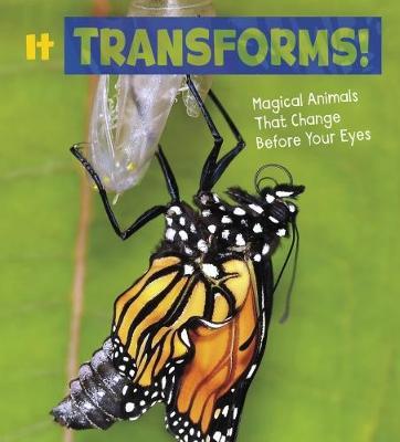 It Transforms! book
