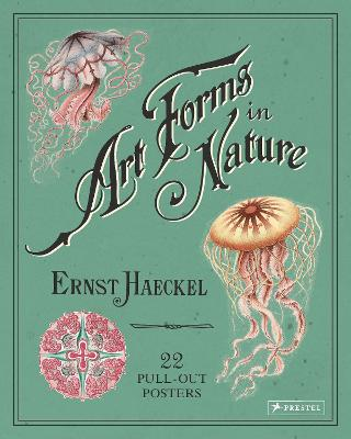 Ernst Haeckel: Art Forms in Nature: 22 Pull-Out Posters by ,Ernst Haeckel