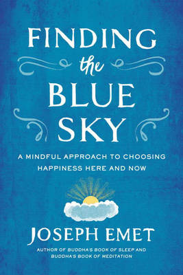 Finding the Blue Sky book