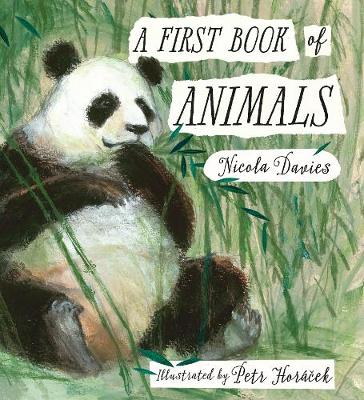 First Book of Animals by Nicola Davies