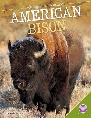 American Bison by Anita Yasuda
