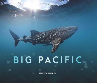 Big Pacific by Rebecca Tansley