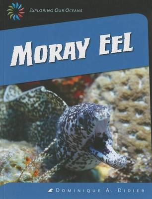 Moray Eel by Dominique A Didier