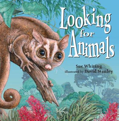 Looking for Animals by Sue Whiting
