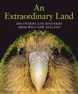 An Extraordinary Land by Rod Morris