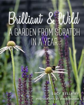 Brilliant and Wild by Lucy Bellamy