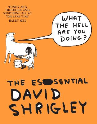 What The Hell Are You Doing?: The Essential David Shrigley book