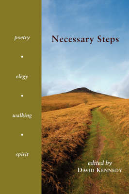 Necessary Steps by David Kennedy, Jr.