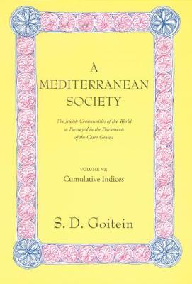 A A Mediterranean Society by S. D. Goitein