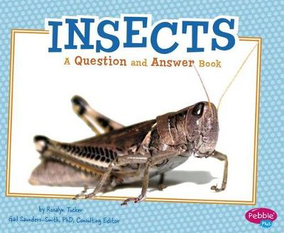 Insects QandA book
