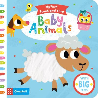 Baby Animals by Campbell Books