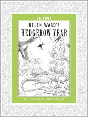 Pictura: Hedgerow Year by Helen Ward