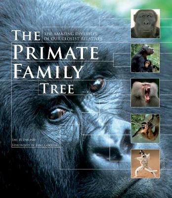 The Primate Family Tree by Ian Redmond