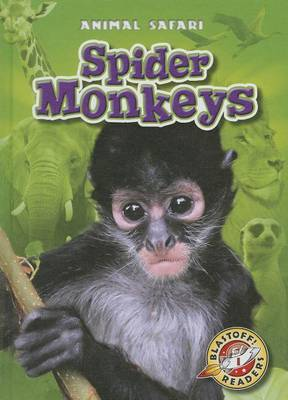 Spider Monkeys by Megan Borgert-Spaniol