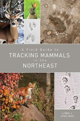 A Field Guide to Tracking Mammals in the Northeast by Linda J. Spielman
