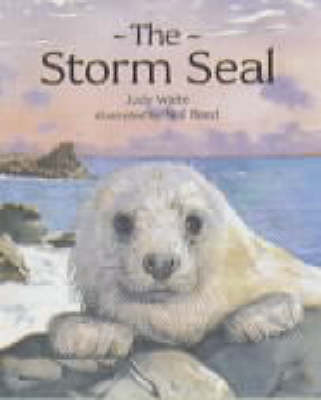 The Storm Seal by Judy Waite