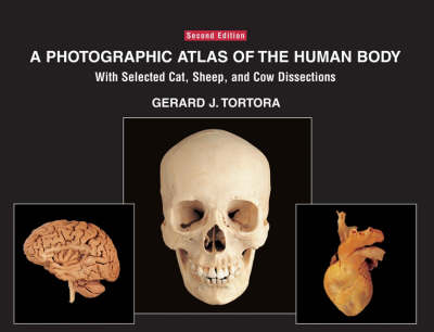 A Photographic Atlas of the Human Body With Selected Cat, Sheep and Cow Dissections by Gerard J. Tortora