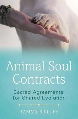 Animal Soul Contracts: Sacred Agreements for Shared Evolution by Tammy Billups
