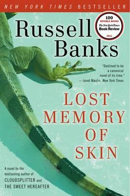 Lost Memory of Skin book