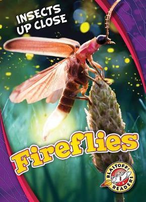 Fireflies by Christina Leaf