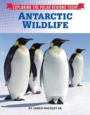 Antarctic Wildlife book