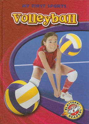 Volleyball by Ray McClellan