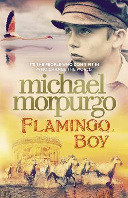Flamingo Boy book