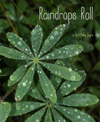 Raindrops Roll by April Pulley Sayre
