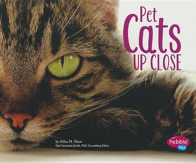 Pet Cats Up Close by Gillia M Olson