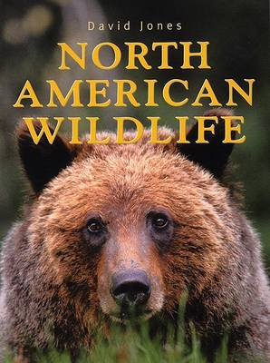 North American Wildlife by David Jones