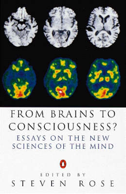 From Brains to Consciousness?: Essays on the New Sciences of the Mind by Steven Rose