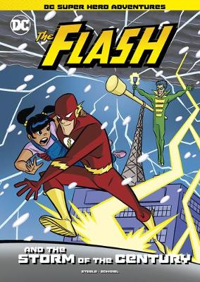 The Flash and the Storm of the Century book