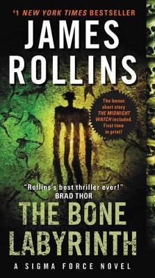 Bone Labyrinth book