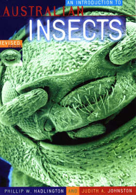 Introduction to Australian Insects by Phillip Hadlington