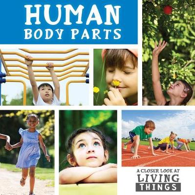 Human Body Parts by Steffi Cavell-Clarke