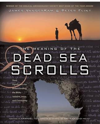 The Meaning Of The Dead Sea Scrolls by James C Vanderkam