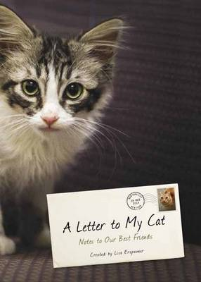 Letter To My Cat book