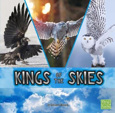 Kings of the Skies by Rebecca Rissman