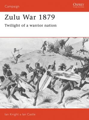Zulu War 1879 book