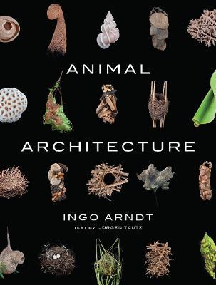 Animal Architecture by Ingo Arndt