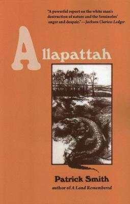 Allapattah book