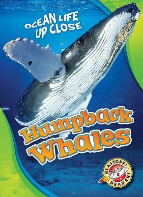 Humpback Whales by Christina Leaf