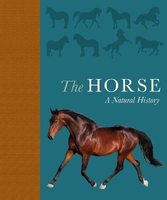 The Horse: A natural history by Debbie Busby