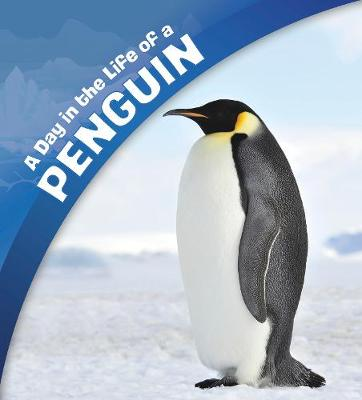 A A Day in the Life of a Penguin by Sharon Katz Cooper